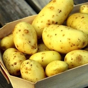 Patates diyeti ( 1 haftada 5 kilo)