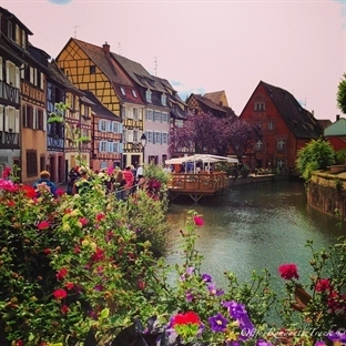 Strasbourg'dan Colmar'a Alsas Şarap Yolu Rehberi