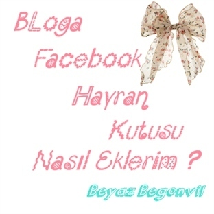 Bloga Facebook Hayran Kutusu Nasıl Eklenir?