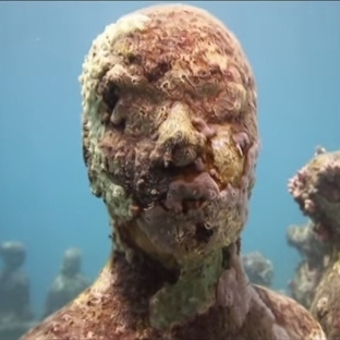 Etkileşimli Tahta İle Deniz Altını Keşfet