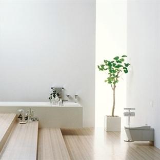 Feng Shuiye Göre Banyo Dekoru