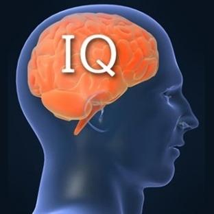 IQ'nuzu Yükseltmek İster miydiniz?