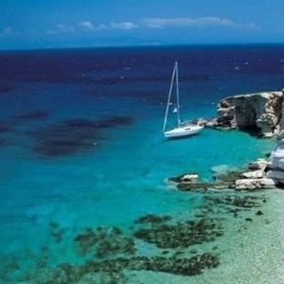 Kos Adasında Gezilecek Yerler – Hipokrat Ağacı