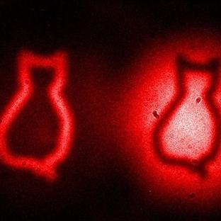 Kuantum Dolanıkla Görüntüleme Sağlandı