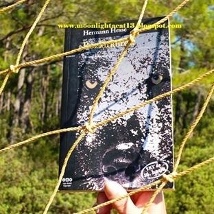 Okuma Halleri, Fotoğraflarla - Bozkırkurdu / Herma