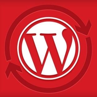WordPress Sitenizi Otomatik Güncellemek