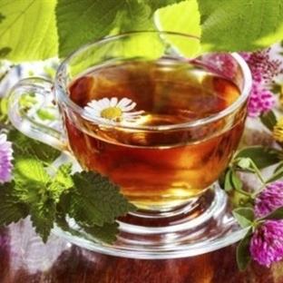 Bağışıklık Sistemini Güçlendiren Kış Çayı