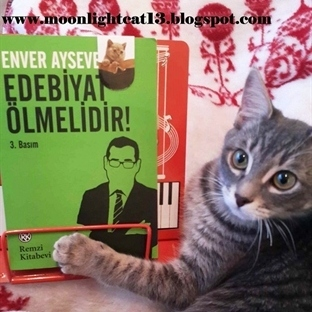 Edebiyat Ölmelidir! - Enver Aysever