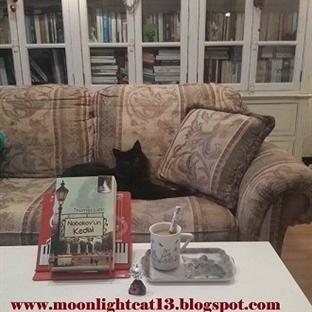 Nabokov'un Kedisi - Thomas Lehr * Güz Okuma Şenliğ