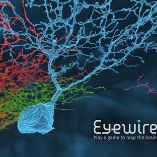 Oyun Oynayarak Beyni Tanıyın-Tamamlayın