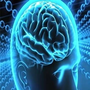 Sosyal Ağları Kullanarak Beynimizi Nasıl Eğitiriz?