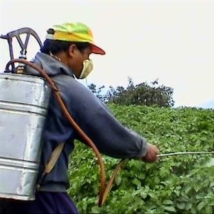 Tarım İlaçlarının Etkileri Yeni Anlaşılıyor