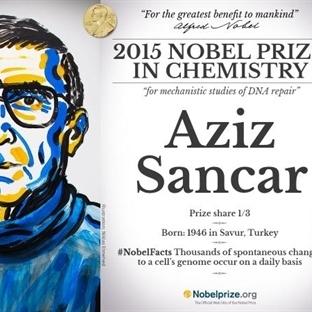 Aziz Sancar ve Kendisine Nobel Kazandıran Teorisi