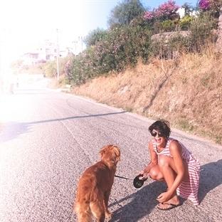 Bir Köpekle Yaşamak
