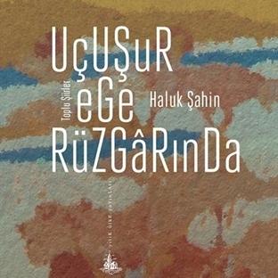 Gazeteci Yazar Haluk Şahin'den Toplu Şiirler