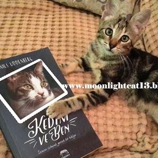 Kedim ve Ben - Nils Uddenberg * Güz Okuma Şenliği