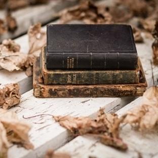 Kitap Önerisi: Sonbaharın Ruhunu Yansıtan 11 Kitap