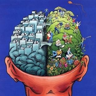 İnsan Beynini Geliştiren 10 Roman