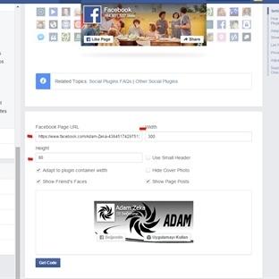 Siteye Facebook Sayfa Beğeni Kutusu Eklemek