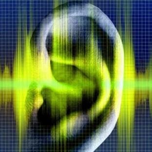 Bilim Adamları Suni Ses Teli Üretti