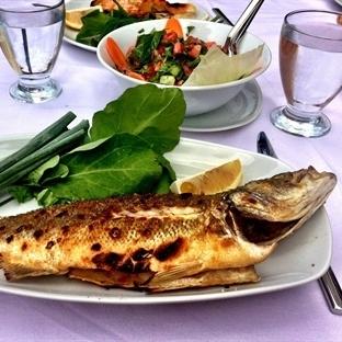 En İyi Balık Restaurantları