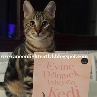 Evine Dönmek İsteyen Kedi - Jill Tomlinson / Kısa