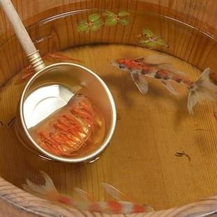 Sanatın İçine Sıkışıp Kalan Japon Balıkları