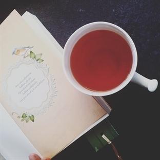 Sarah Jio - Elveda Haziran Kitap Yorumu