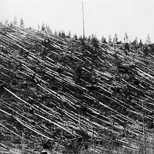 Sır Dolu Bir Patlama: Tunguska