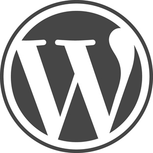 2015 in En İyi Wordpress Eklentileri