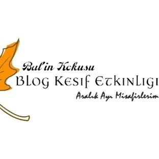 Blog Keşif Etkinliği Aralık Ayı Misafirlerim :)