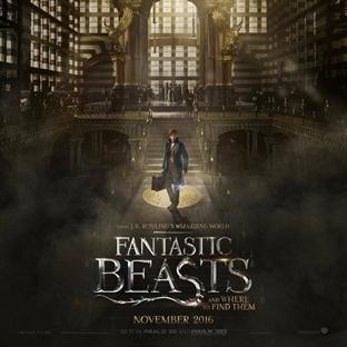 Fantastic Beasts Fragmanı Yayınlandı