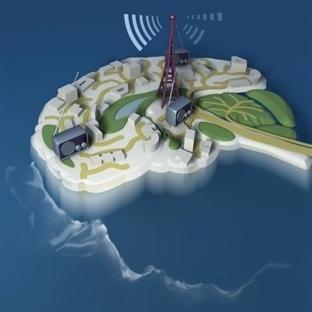 Farelerde Nöron Stimülasyonuyla Bilinç Değişti