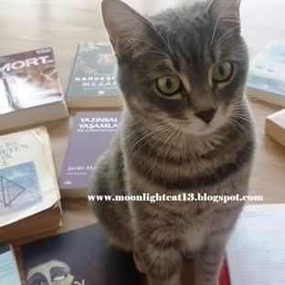 Kış Okuma Şenliği'ne Hazırlanırken:)