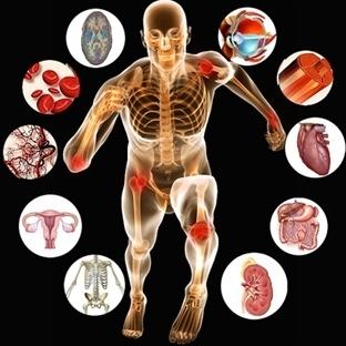 İnsan Vücuduyla İlgili Şaşırtıcı Gerçekler