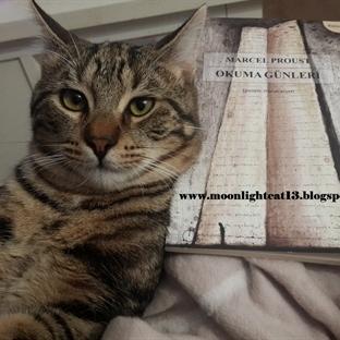 Okuma Günleri - Marcel Proust / Kısa Kitap Festiva
