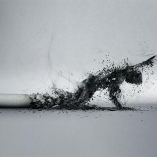 Sigarayı Bıraktıran Mobil Uygulama