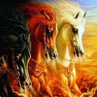 Atları neden severiz?