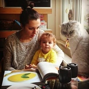Bebeğinize Taneli Yemek Yedirmek Ne Kadar Güvenli?