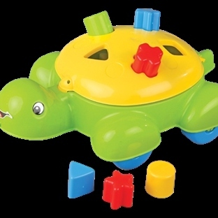 Bim'de Kaplumbağa Bul-Tak Oyuncağını Kaçırmayın