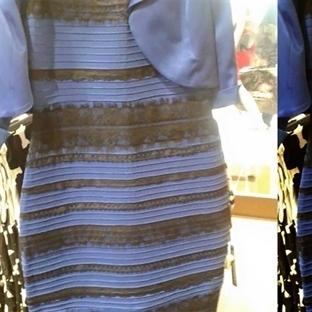 Bu Elbise Ne Renk?