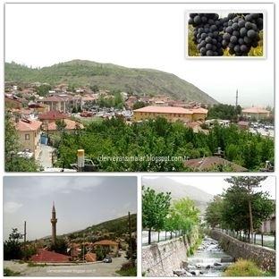 'Cimin Üzümü' ile meşhur Erzincan'ın Üzümlü İlçesi