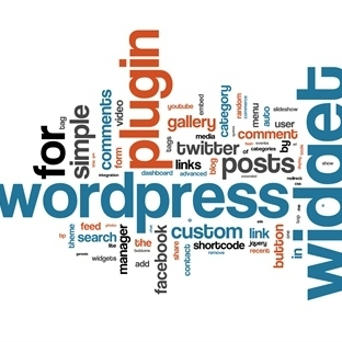 Hosting'e Wordpress Blog Kurulumu Nasıl Yapılır?