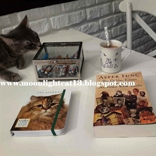 Kedi - Kitap - Kahve  ♥♥♥