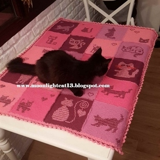 Kedili Battaniye, Mırk Mırkkk