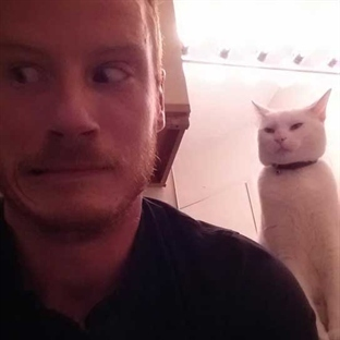 Kediniz sizi öldürmeyi planlıyor olabilir mi?