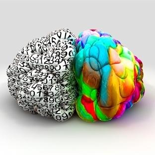 İnsan Beyninin Gizemli Tarihi