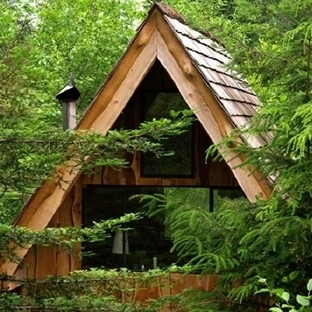 Ormanın İçindeki Ekolojik Kulübe