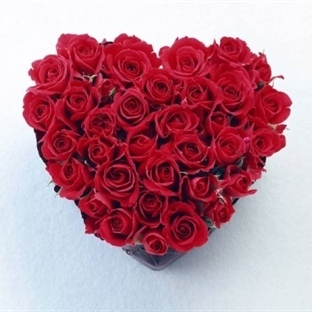 Sevgililer Günü etkinlikleri