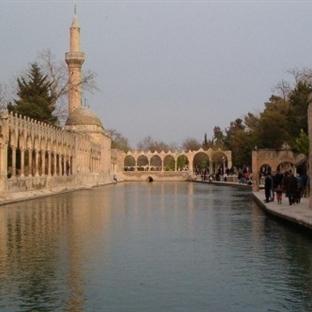 2014 Yılında Türkiye' de En Fazla Yer Bildirimi Ye